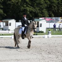 Outdoor Brabant Stock 48 by chronically