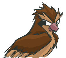 Muro Test 4: Pidgey by zephyr-san