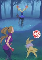 chapter XX - vs.xerneas by Riza23