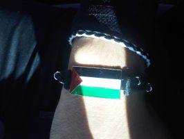 Sun will shine for Palestine by 95blckfirebird
