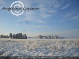 Landscape in snow by Angelic-Fighter