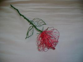 Wire Rose by charraj