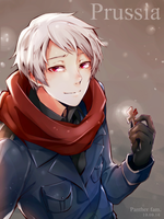 Hetalia Prussia by Panther-fam