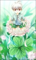 00 Clover Blossom by BOMB4Y