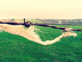Barbed wire rusted by May-dayMay-day