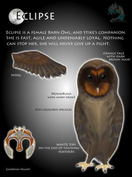 Black Barn Owl OC- Eclipse by PunkHound