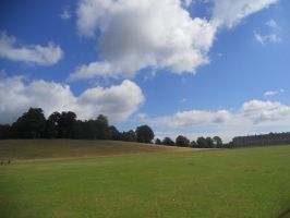 Petworth House and Park 074 by VIRGOLINEDANCER1