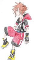 Kingdom Hearts - Sora by SwiftNinja91