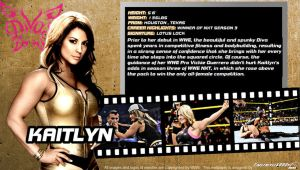 WWE Kaitlyn ID Wallpaper Widescreen by Timetravel6000v2