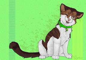 meow mix by catfarts