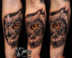 Realistic owl by KimAnger