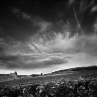 clouds and vines by VaggelisFragiadakis