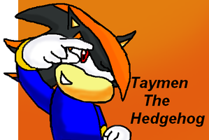 Taymen The Hedgehog Art by supersilver27