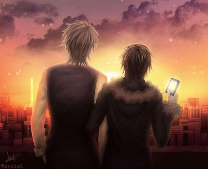 Shizuo, Izaya, And The Sunset by Roksiel