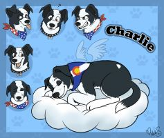 Charlie for Canine Hybrid by Miss-Melis
