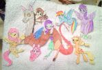 Group Shot - My Little Pony by ameliacostanza
