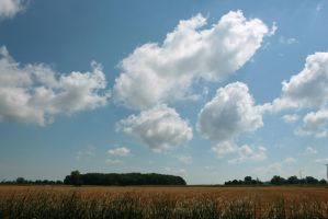 Clouds over wheat by AaronMk