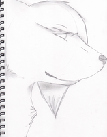 Traditional-Semirealistic practice by CYB3R-PUNK