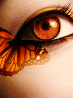 Orange Butterfly Eye by Crazy-Kiwii