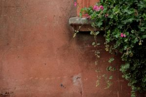 .my italy by immacola