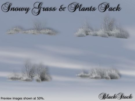 Snowy Grass and Plants Pack by BlackStock