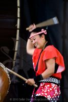 Taiko by TechnologicBookwyrm