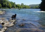 On the Rogue river ... by JohnHapMurphy