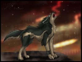 Old: Twilight Howl by Acaris