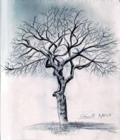 Tree Without Leaves by ArtWarrior25
