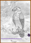 The Hawk and Cherry Blossom (Traditional) by PurpleAlphaWolf