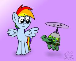 Rainbow Dash and Tank by petirep