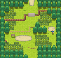 Route 101 remake by Pokemon-Diamond