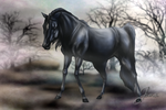 Black hors in the Dark country by C-Creatio