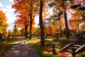 Evergreen Cemetery II by xheartxc0r3x