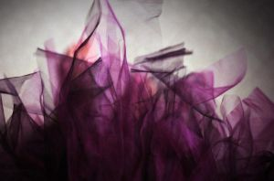 Such A Tulle by amy-derfer