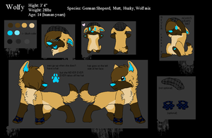 Wolfy's New Reference Sheet by MUDDii