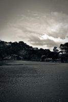Waiheke Island 5 by MisterDedication