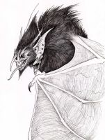 The Bat God by verreaux