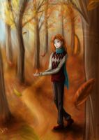 Automne by SpacePhoenix
