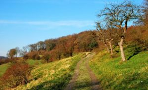 Limburg hill walking by jchanders