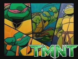 TMNT FicPic by Looney-Girl2772
