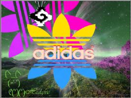 Adidas Space by hedgiee