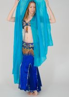 Pose of A Bellydancer by Danika-Stock