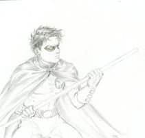 Robin sketch by thirth