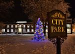 City Park Christmas Tree by funygirl38