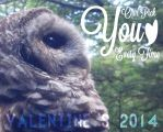 Valentine's Pun - Owl - 2014 by FritziFaust