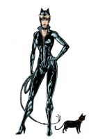 the Catwoman by sehroyal