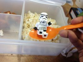 RICE TROOPER by Carmine777