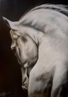 'Emerge' - charcoal drawing by lalabellexx
