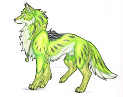 Kiwi by CaptainMorwen